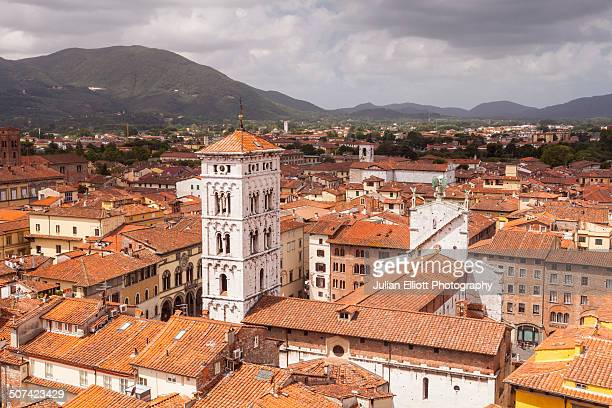 The rooftops of the historic centre of Lucca.