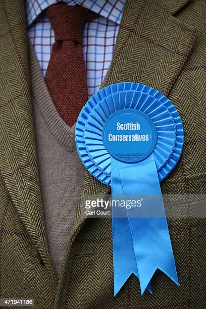 The rosette of a Scottish Conservative Party supporter is pictured during a Conservative Party campaign event on May 2 2015 in Hamilton Scotland...