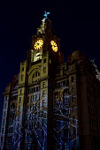 The Royal Liver building in Liverpool is illuminated with a spider's web during a celebration to mark the 100th anniversary of the construction of...