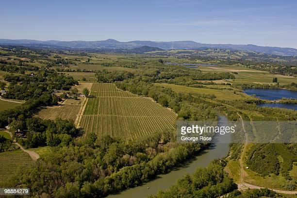 The Russian River and several vineyards are seen in this 2010 Healdsburg Russian River Valley Sonoma County California aerial landscape photo