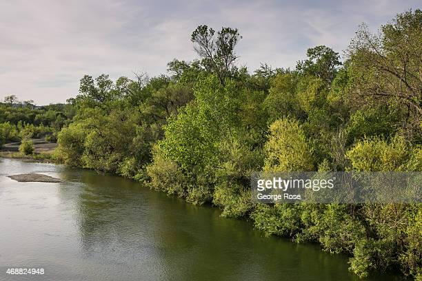 The Russian River flows through the heart of the Alexander Valley on March 30 near Healdsburg California Despite record breaking December rains the...