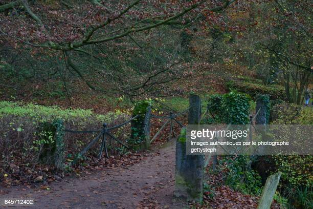 The rustic footbridge at the end of autumn
