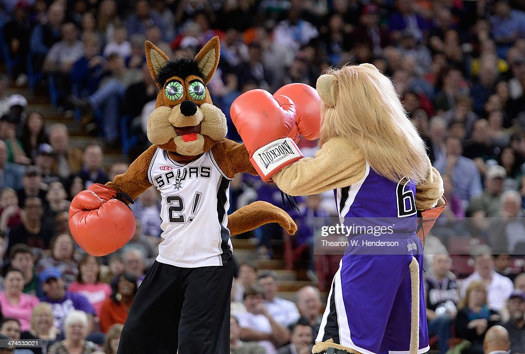 The Sacramento Kings mascot 'Slamson' has a boxing match with the San Antonio Spurs mascot 'Coyote' during a timeout of an NBA Basketball game between the Boston Celtics and Sacramento Kings at Sleep Train Arena on February 22, 2014 in Sacramento, California.