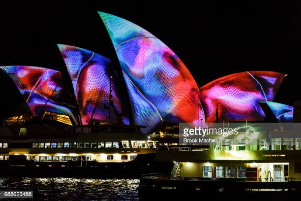 The sails of the Opera House are lit to start the Vivid Festival on May 26 2017 in Sydney Australia Vivid Sydney is an annual festival that features...