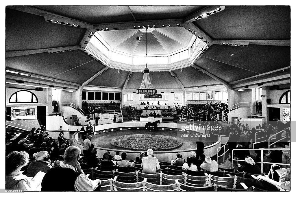 The sales ring at Tattersalls yearling sales on October 08, 2013 in Newmarket, England.