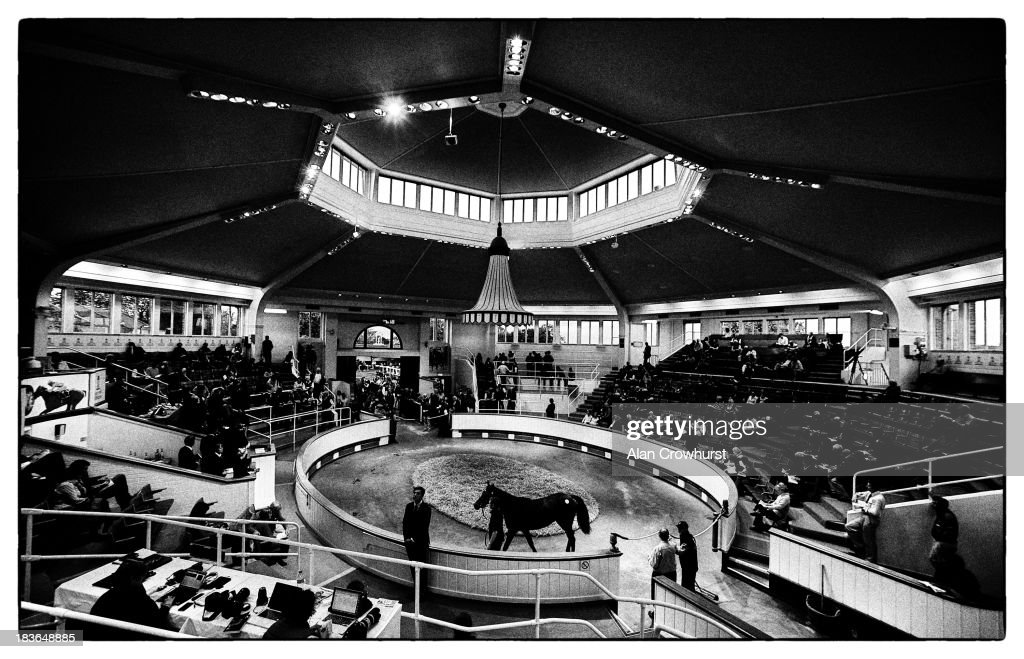 The sales ring lit up as the evening sets in at Tattersalls yearling sales on October 08, 2013 in Newmarket, England.