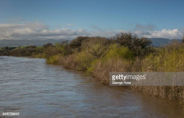 The Salinas River is at or above flood stage following a series of heavy storms as viewed on February 22 near King City California Because of its...