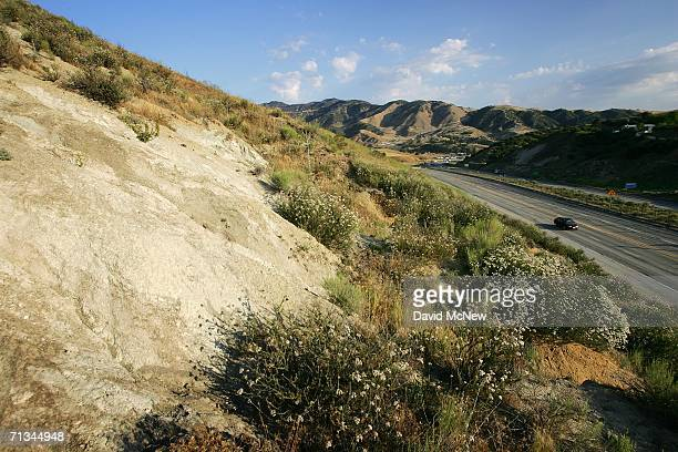 The San Andreas Fault visible as the line between grey metamorphic quartz monzonite and vegetationcovered brown sedimentary sandstone and siltstone...