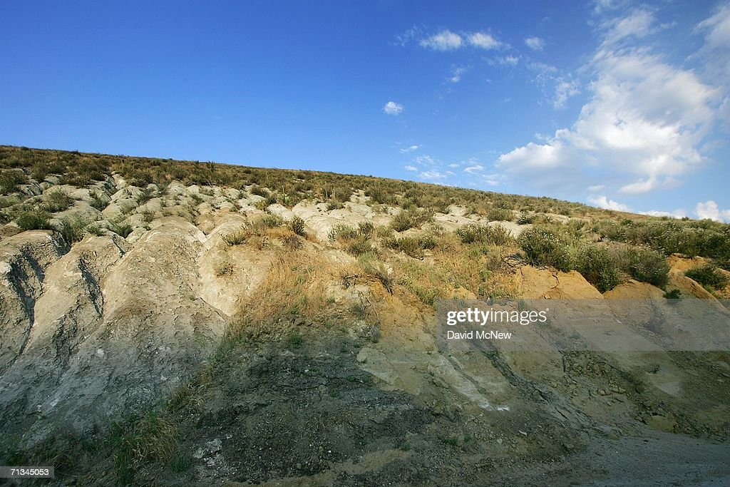 The San Andreas Fault visible as the line between grey metamorphic quartz monzonite and brown sedimentary sandstone and siltstone is seen at Tejon...