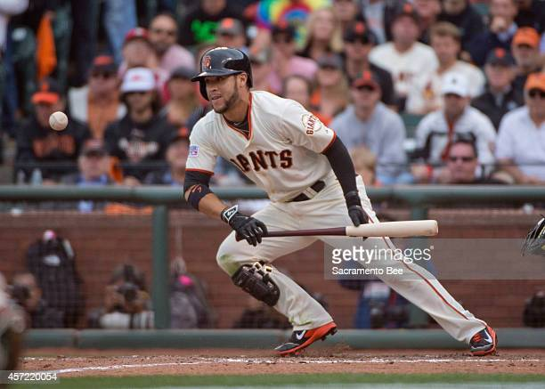 The San Francisco Giants' Gregor Blanco puts down a 10thinning bunt scoring Brandon Crawford from third against the St Louis Cardinals in Game 3 of...