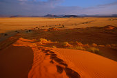 The Sands of Namib