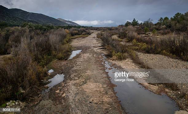 The Santa Ynez River begins to fill with water following recent rainstorms as viewed on January 7 2016 in Santa Ynez California Because of its close...