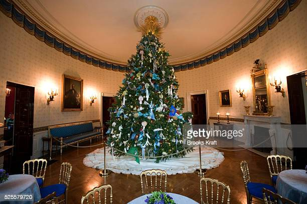 The Savannah College of Art and Design helped design the ornaments that adorn the official White House Christmas tree located in the Blue Room The...