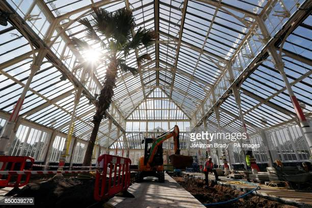 The scene inside the Temperate House that will reopen in May next year at the Royal Botanic Gardens in Kew SW London after the Acircpound41 million...