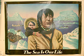 The Sea is Our Life Poster from the film by Bo Boudart This poster is hanging in the tannery on Shishmaref and reflects how the Inuit derive most of...