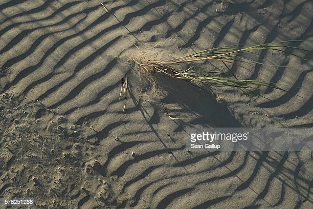 The setting sun casts shadows over patterns in a med flat left by tides on a beach on July 18 2016 at SanktPeterOrding Germany SanktPeterOrding is...