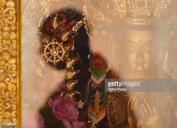 The shadow of a lama artist who paints Thangk is reflected on the glass protecting a Buddha statue at the Wutunshang Monastery on June 7 2006 in...