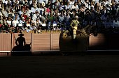 TOPSHOT The shadow of a picador is projected against a barrier during a bullfight at the Maestranza bullring in Sevilla on April 7 201 / AFP /...