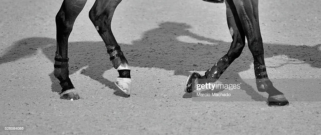The shadow of Abdullah Alsharbatly's horse Tobalio during the Longines Global Champions Tour of Shanghai day 2 on April 30, 2016 in Shanghai, China.