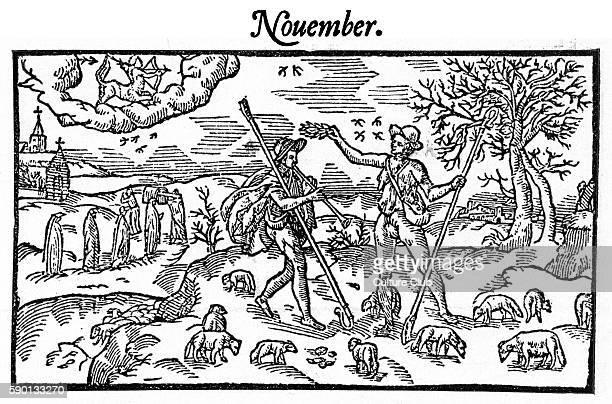 The Shepherd 's calendarNovember 1579 by Edmund Spenser Farmers The Shepheardes Calender ES 1552 1599