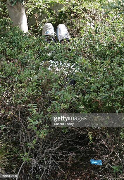 The shoes can be seen of the dead man found lying amongst the shrubs in the courtyard outside The Metropolis Hotel in High Street Auckland January 27...