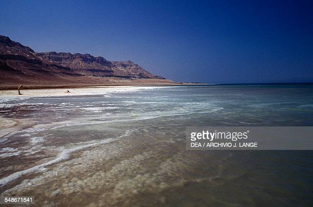 The shores of the Dead Sea Israel