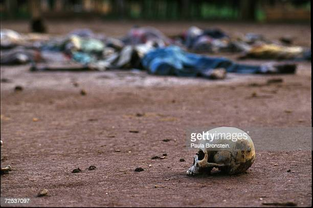 The skull of a murdered Tutsi lies on the earth in the RibezoBirenga sector of Rwanda May 1994 Hutu militias seeking to rid Rwanda of Tutsis brutally...