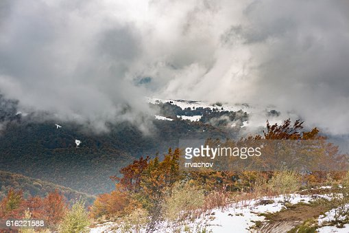 The slope with snow and beautiful, colorful autumn trees : Foto stock