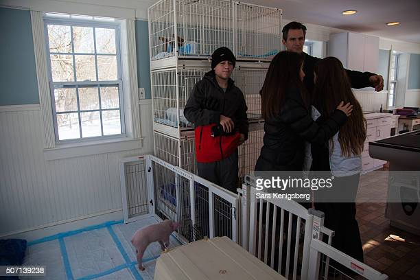 The Smith family consoles Catherine Smith as Wee Wee the piglet plays at Poplar Spring Animal Sanctuary January 27 2016 in Poolesville Maryland The...