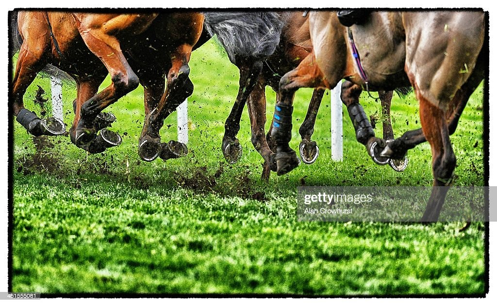 The soft going is kicked up as the runners turn into a bend at Ascot racecourse on November 23, 2013 in Ascot, England.