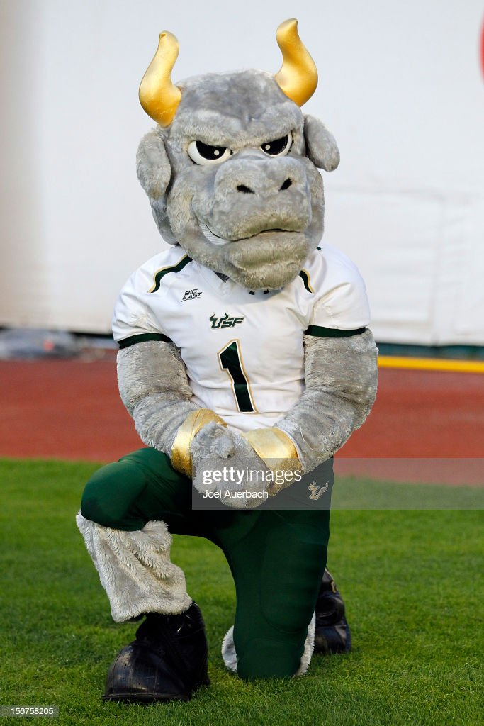 The South Florida Bulls mascot, 'Rocky' looks on during second half action against the Miami Hurricanes on November 17, 2012 at Sun Life Stadium in Miami Gardens, Florida. The Hurricanes defeated the Bulls 40-9.