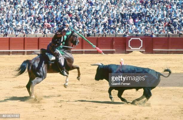 The Spanish bullfighter Rafael Peralta during a bullfight Madrid Spain
