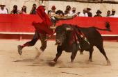 The Spanish legend matador Jose Tomas pardons a Parlade fighting bull during a historic solo bullfight against six bulls as part of the 61th Feria de...