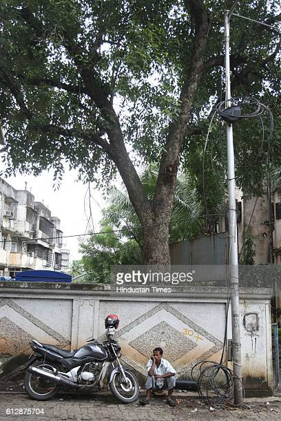 The spot where Tamanna Bhojani's backbone fractured after a tree fall on her at Kandivali