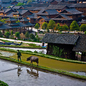 The spring of Miao Nationality Village