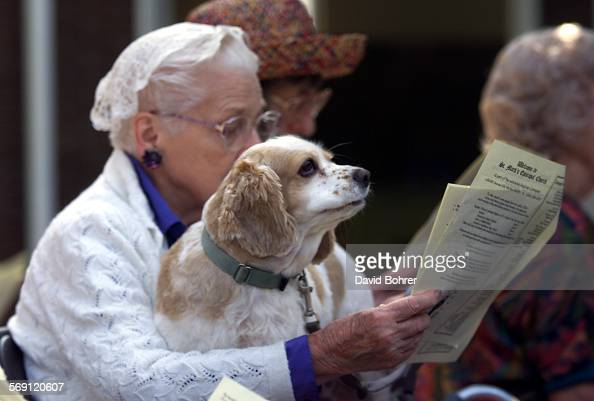 The St Mark's Episcopal Church held it's 2nd annual Blessing of the Animals during services on Sunday morning in Van Nuys Over 50 animals came with...