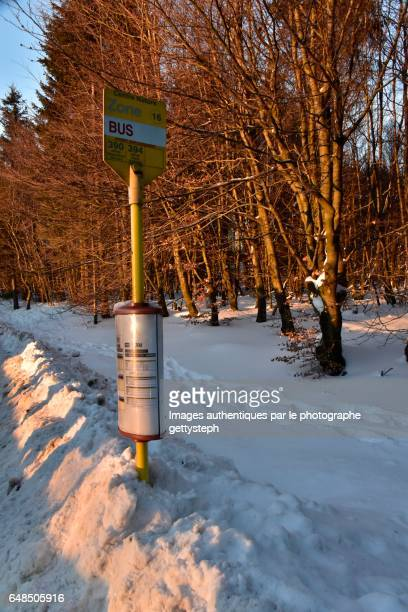 The stake of the bus stop poster in snow under twilight
