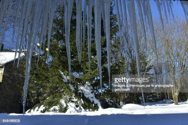 The stalactite ices
