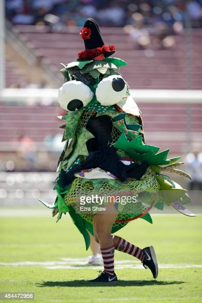 The Stanford Cardinal mascot runs on the field before their game against the UC Davis Aggies at Stanford Stadium on August 30 2014 in Palo Alto...