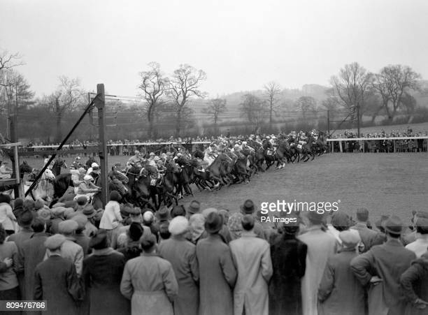 The start of the Lincolnshire Handicap Commissar the 331 winner is away to a good start in the middle of the field