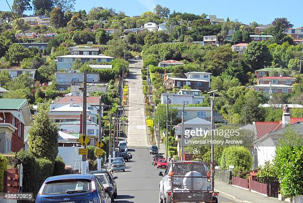 The steepest street in the world Dunedin New Zealand