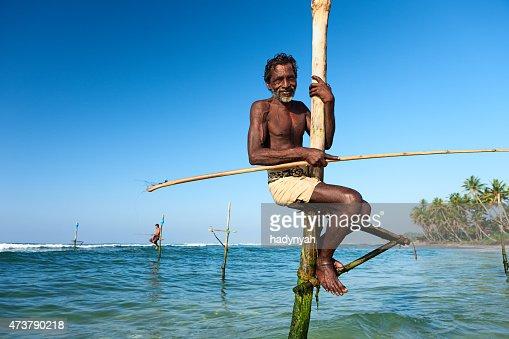 The stilt fishermen at work, Sri Lanka, Asia.