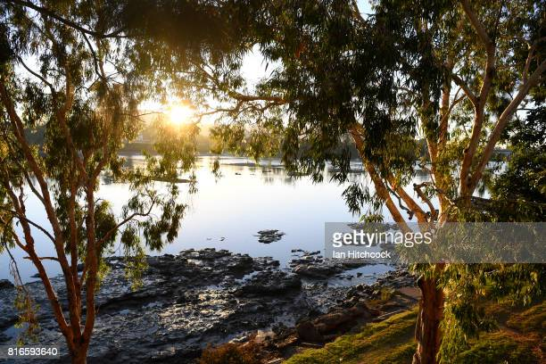 The sun is seen rising through tree foliage over the Fitzroy river on July 12 2017 in Rockhampton Australia