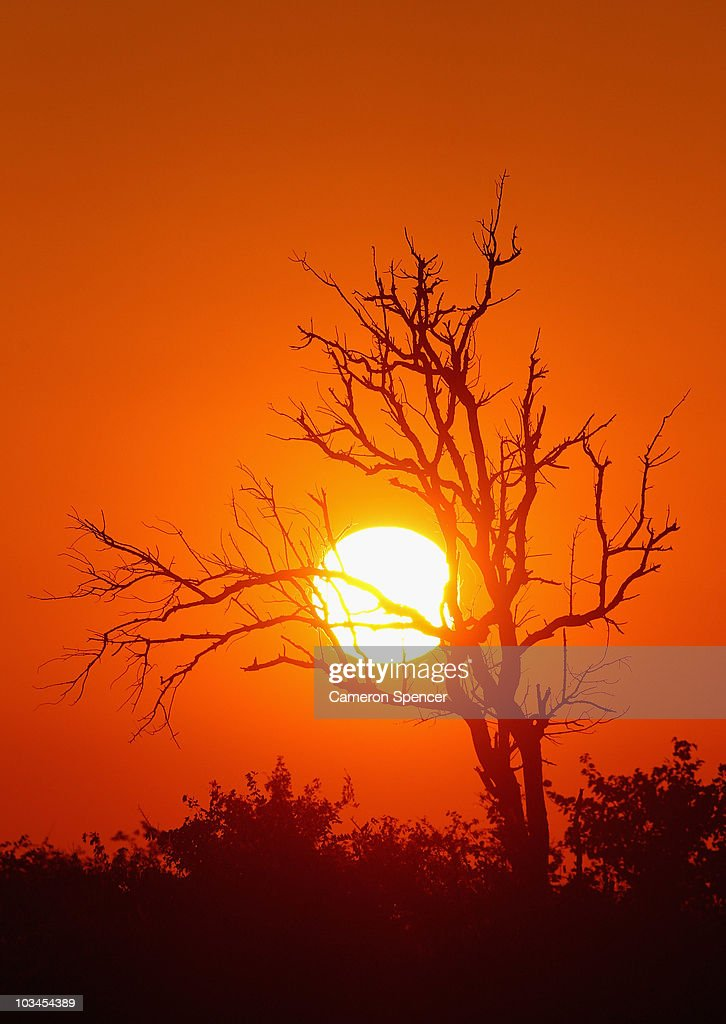The sun rises at the Mashatu game reserve on July 27, 2010 in Mapungubwe, Botswana. Mashatu is a 46,000 hectare reserve located in Eastern Botswana where the Shashe river and Limpopo river meet.