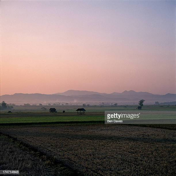 CASBARAN PANGASINAN PHILIPPINES The sun rises over a patchwork of rice fields near the village of Casbaran in Central Luzon in the Philippines Framed...