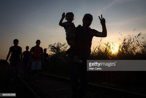 The sun sets behind migrants as they cross the border from Serbia into Hungary close to the village of Roszke on August 28 2015 near Szeged Hungary...