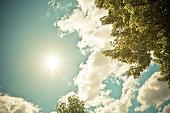 The sun shining