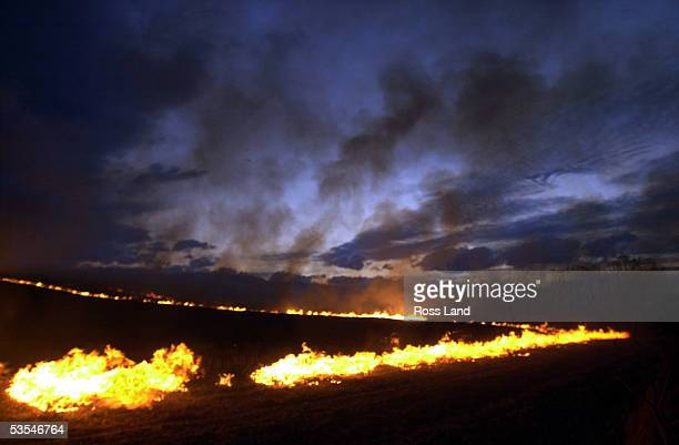 The sunset creates vivid colours in the sky over the Southern Alps as fire lights the hills from a controlled burn off of maize stubble on a farm...