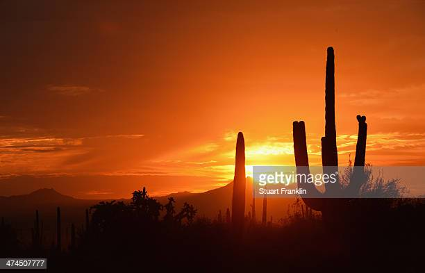 The sunsets on the course after the final round of the World Golf Championships Accenture Match Play Championship at The Golf Club at Dove Mountain...