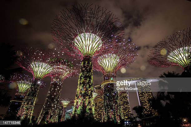 The Supertree Grove is illuminated as rain falls during the Gardens by the Bay Light and Sound show on July 2 2012 in Singapore The free nightly...